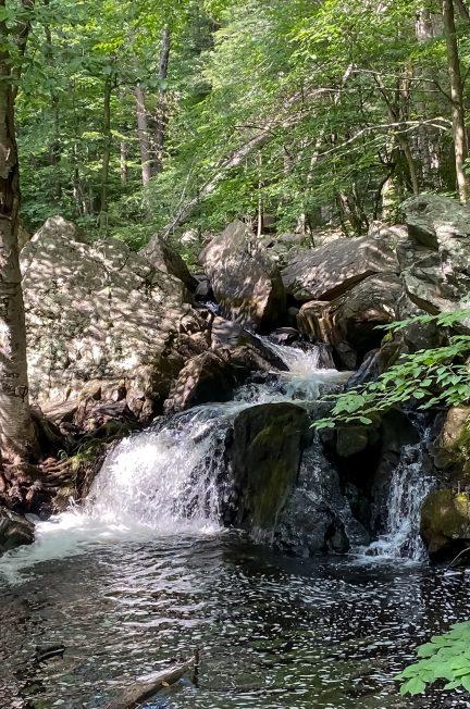 Allamuchy Trails