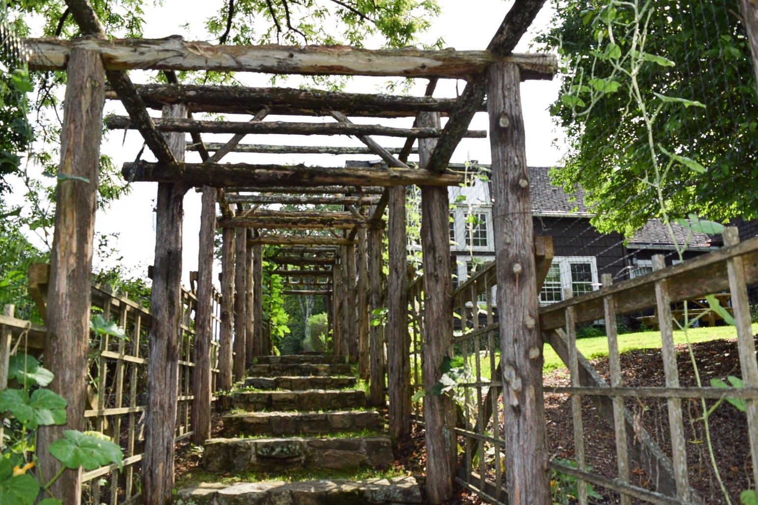 Willowwood Arboretum Far Hills Hidden Garden